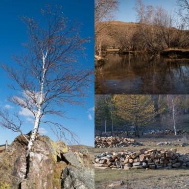 Альбом: ПриродаПейзажи, 14 фотографий