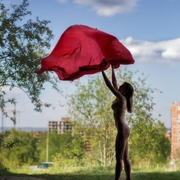 Фотография #477564, автор: Андрей Степанов