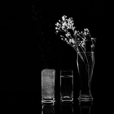 Фотография #571021, автор: Оксана Бурьян