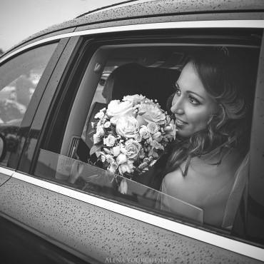 Фотография #147023, автор: Алена Юрченко