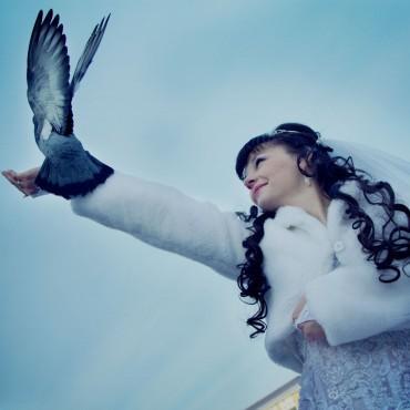 Фотография #147801, автор: Анастасия Матвеева