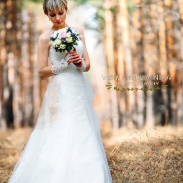 Фотография #151864, автор: Вадим Шишлянников