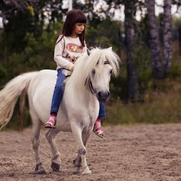 Фотография #152971, автор: Валентина Альянкова