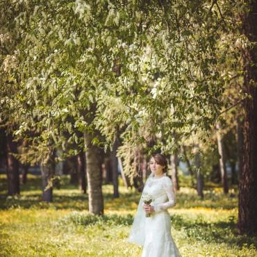 Фотография #151709, автор: Максим Соколов