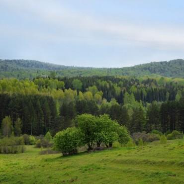 Фотография #159991, автор: Алексей Сиед