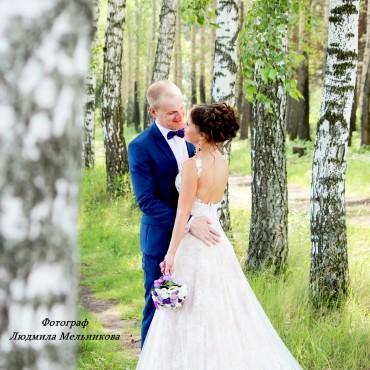 Фотография #155471, автор: Людмила Мельникова