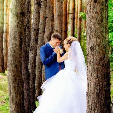 Фотография #154553, автор: Людмила Мельникова