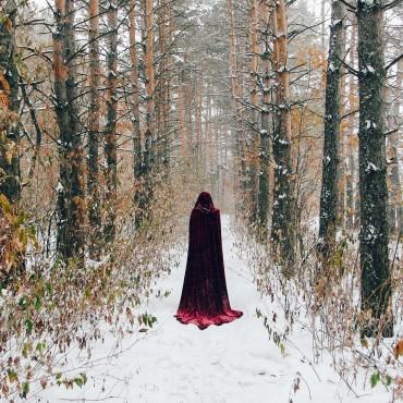 Фотография #157272, автор: Анна Романова