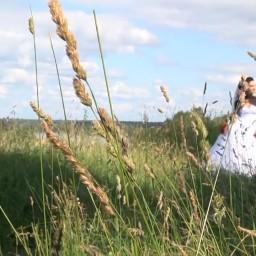 Видео #109522, автор: Александр Карпов