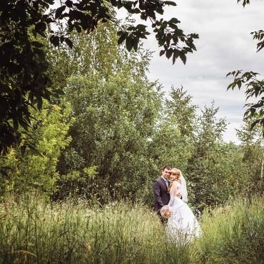 Фотография #113230, автор: Алексей Березин