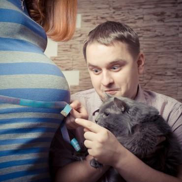 Фотография #111481, автор: Дмитрий Сунцов