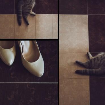 Фотография #113843, автор: Наталья Новоселова