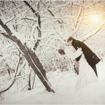 Фотография #113443, автор: Дмитрий Лопатин