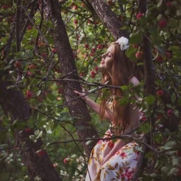 Фотография #113501, автор: Елена Миронова