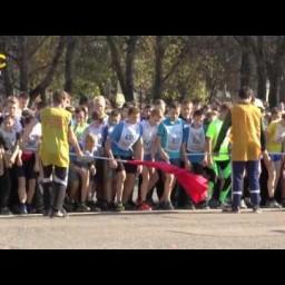 Видео #109633, автор: Антон Мамаев