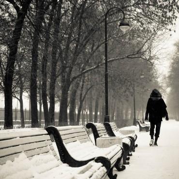 Фотография #117071, автор: Анна Агаркова