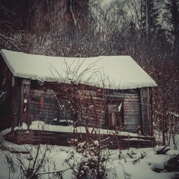 Фотография #122189, автор: Анна Агаркова