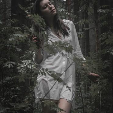 Фотография #117056, автор: Анна Агаркова