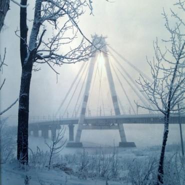 Фотография #119305, автор: Анатолий Медвидь