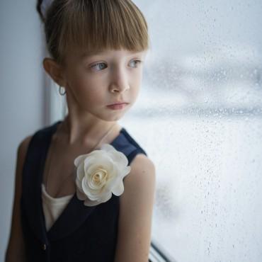 Фотография #120068, автор: Людмила Максимова