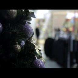 Видео #395899, автор: Юлия Долматова