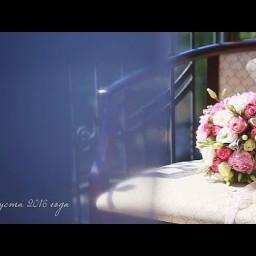 Видео #395901, автор: Ольга Арнаутова