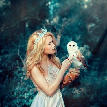 Фотография #398384, автор: Светлана Челядинова