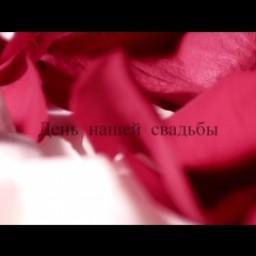 Видео #395913, автор: Руслан Задорнов