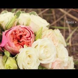 Видео #122848, автор: Алексей Воробейкин