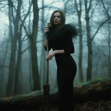 Фотография #130224, автор: Инга Медведева