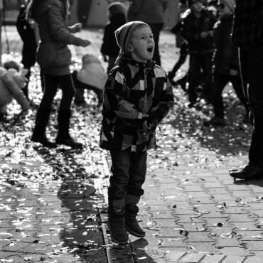 Фотография #130415, автор: Ольга Сковородникова