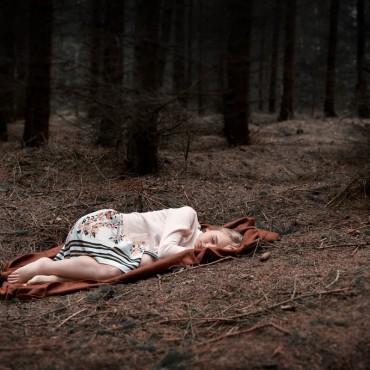 Фотография #132151, автор: Владимир Афанасьев