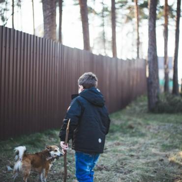 Фотография #126501, автор: Татьяна Караман