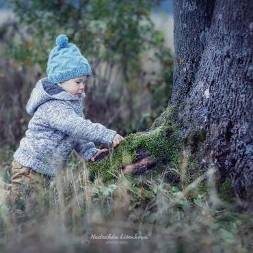 Фотография #134839, автор: Надежда Лисенкова