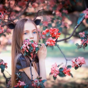 Фотография #135293, автор: Анна Черкашина