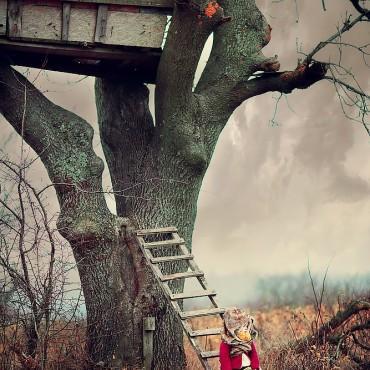 Фотография #135550, автор: Юрий Козлов