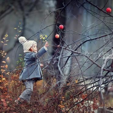 Фотография #135544, автор: Юрий Козлов