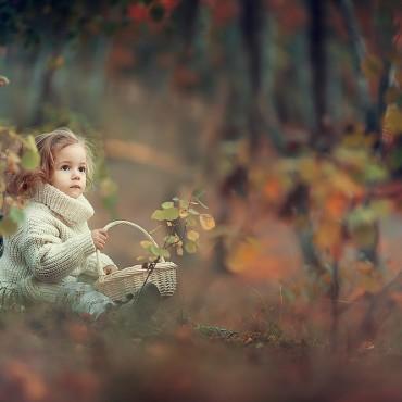 Фотография #135539, автор: Юрий Козлов