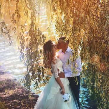 Альбом: Свадебная фотосъемка, 17 фотографий