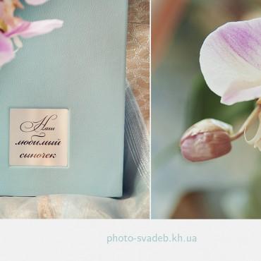 Фотография #137763, автор: Эвелина Большенко