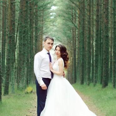 Фотография #138195, автор: Любовь Метохир