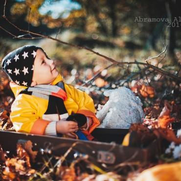 Фотография #138789, автор: Александра Абрамова
