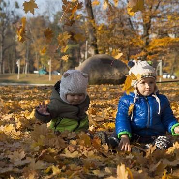 Фотография #139136, автор: Инна Борисова