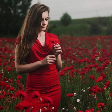 Фотография #141120, автор: Владимир Лем