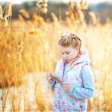 Фотография #140749, автор: Елена Барановская