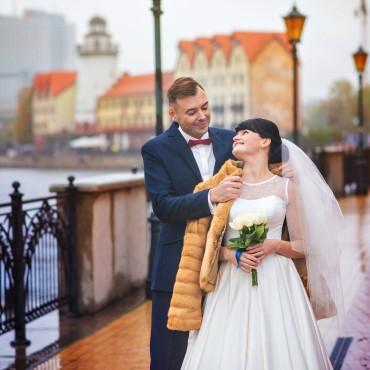 Фотография #140708, автор: Елена Барановская