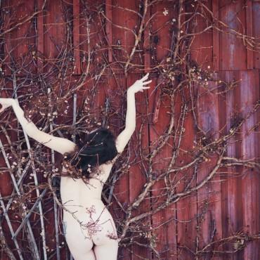 Фотография #141116, автор: Евгения Локес