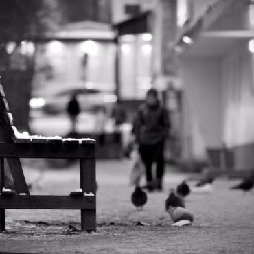 Фотография #146335, автор: Елена Тарасевич
