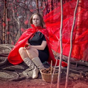 Фотография #141498, автор: Елена Тарасевич