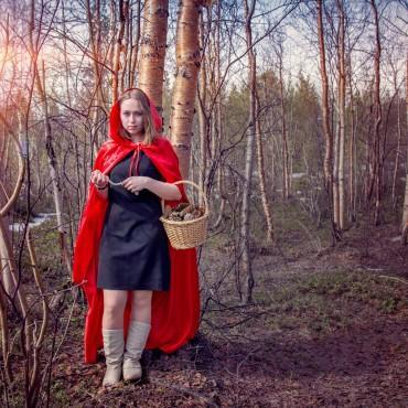 Фотография #141505, автор: Елена Тарасевич